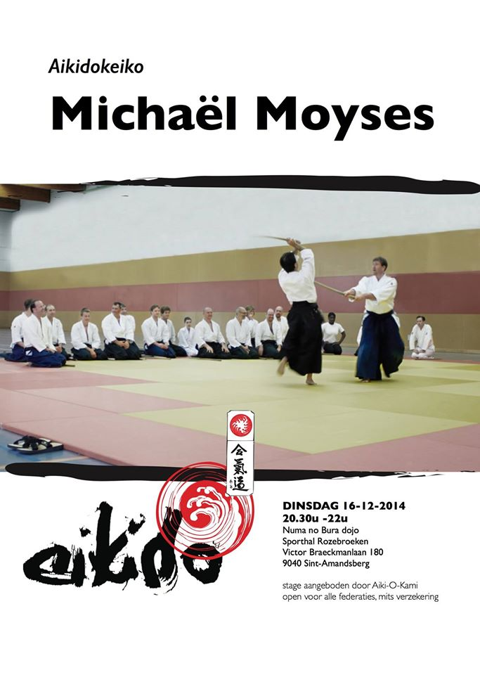 aikido stage michael moyses